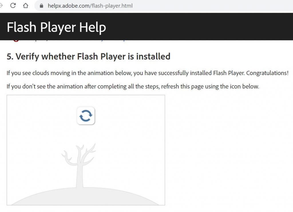 Verifying Flash in no longer installed.